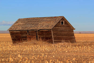 Photograph - Old Barn by Shane Bechler