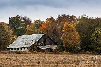 Art Print featuring the photograph Old Barn by Debbie Green