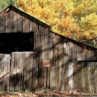 Old Barn In Autumn Art Print