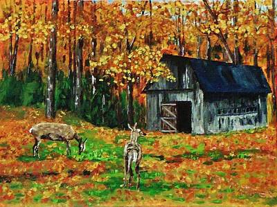 Old Barn In The Woods Art Print