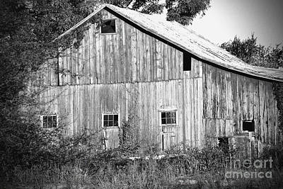 Photograph - Old Barn  by Karen Adams