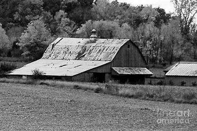Photograph - Old Barn by Mary Carol Story