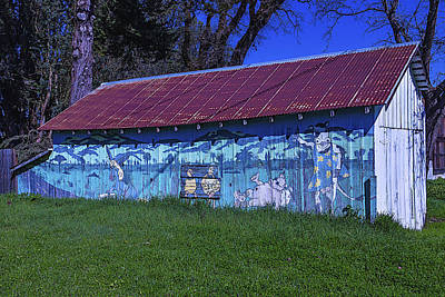 Pig Photograph - Old Barn Mural by Garry Gay