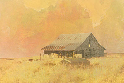 Old Barn On The Prairie Art Print by Ann Powell
