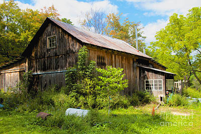 Photograph - Old Barn by William Norton