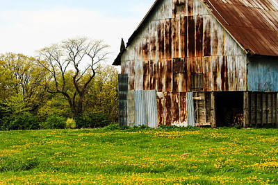 Photograph - Old Barn With Dandelions by Ben Graham