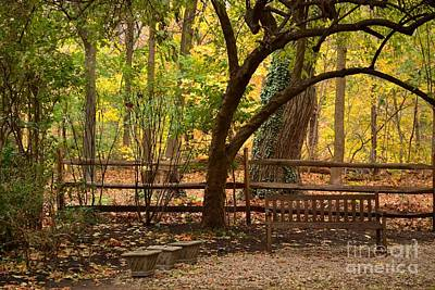 Photograph - Old Bench In The Woods by Miriam Danar