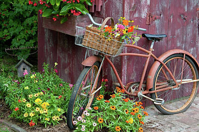 Built Structure Photograph - Old Bicycle With Flower Basket Next by Panoramic Images