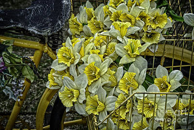 Photograph - Old Bike And Yellow Flowers by Phil Cardamone