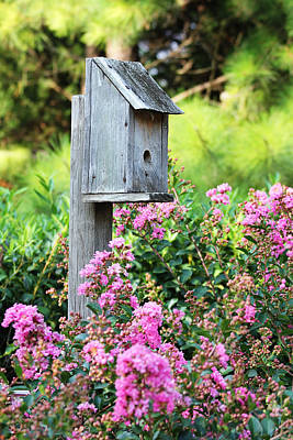 Photograph - Old Bird House by Trina  Ansel