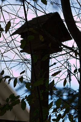 Photograph - Old Birdhouse In Silhouette  by Marie Jamieson