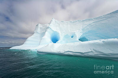 Photograph - Old Blue Iceberg  Near South Georgia Isl by Yva Momatiuk John Eastcott