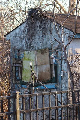 Old Blue Shack Art Print by Tom Gari Gallery-Three-Photography
