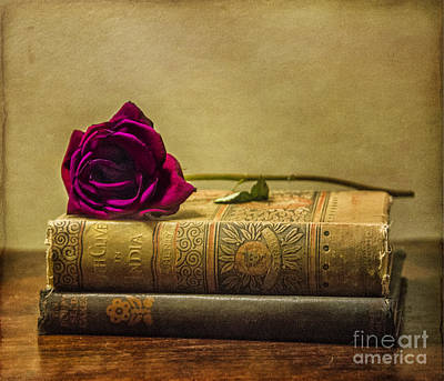 Photograph - Old Book Love by Terry Rowe