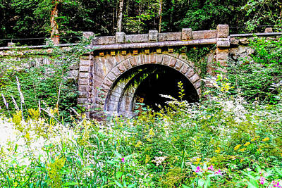 Photograph - Old Bridge In Black Forest Germany by Marilyn Burton