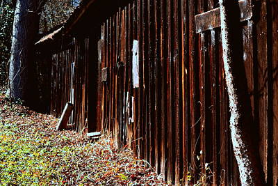 Photograph - Old Brown Barn by Lisa Wooten