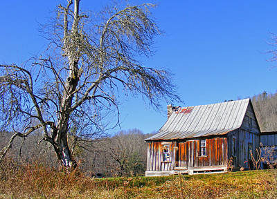 Photograph - Old Cabin And Tree by Duane McCullough
