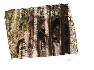 Photograph - Old Cabin In Georga by Gary Gunderson