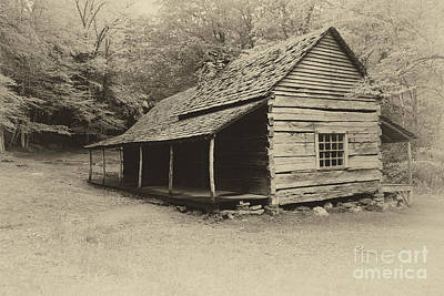 Old Cabin Art Print by Todd Bielby