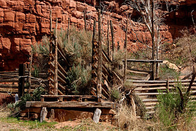 Cattle Chute Photograph - Old Cattle Chute by Ernie Echols