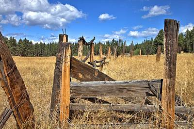 Photograph - Old Cattle Pen by Gordon Elwell