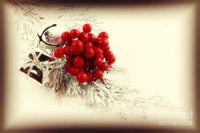 Photograph - Old Christmas Ornaments by Charline Xia