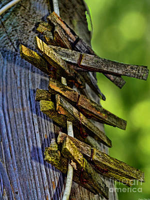 Photograph - Old Clothes Pins I by Debbie Portwood