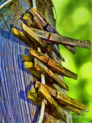 Photograph - Old Clothes Pins II - Digital Paint by Debbie Portwood