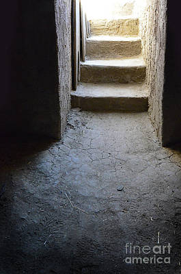 Photograph - Old Dirt Cellar Steps by Jill Battaglia