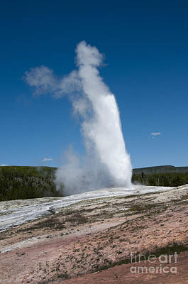 Photograph - Regular As Clockwork When Old Faithful Blows by Brenda Kean