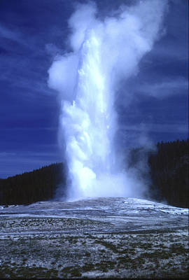 Photograph - Old Faithful by Chris Reed