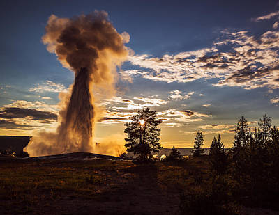 Photograph - Old Faithful Glory by Vishwanath Bhat