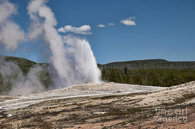Photograph - Old Faithful In Yellowstone by Brenda Kean