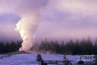 Photograph - Old Faithful In Yellowstone  by Art Wolfe