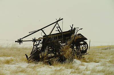 Birds Rights Managed Images - Old Farm Equipment Northwest North Dakota Royalty-Free Image by Jeff Swan