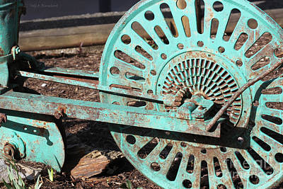 Photograph - Old Farm Equipment by Todd Blanchard