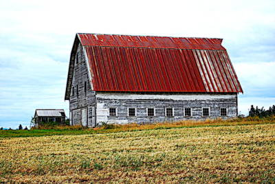Photograph - Old Farm II by Kathy Sampson
