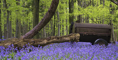 Old Farm Machinery In Vibrant Bluebell  Spring Forest Landscape Art Print by Matthew Gibson