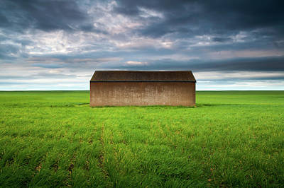 Green Color Photograph - Old Farm Shed In Green Wheat Field by Robert Lang Photography