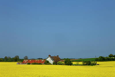 Old Farm Surrounded In Oilseed Rape Art Print by Panoramic Images
