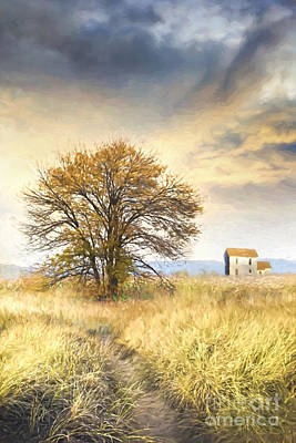 Photograph - Old Farmhouse In Fields/ Digital Painting by Sandra Cunningham