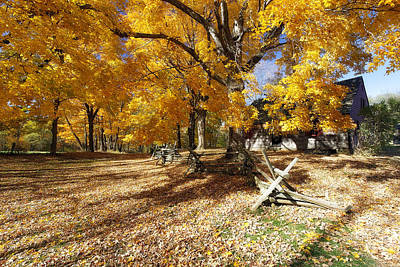 Historic Site Photograph - Old Farmroad With Autumn Colors by George Oze