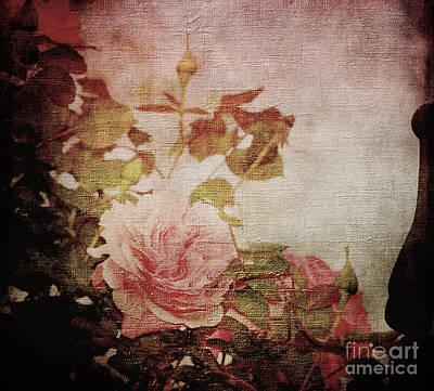Old Fashion Rose Art Print