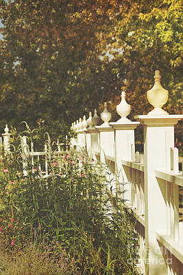 Photograph - Old-fashioned Flower Garden by Sandra Cunningham