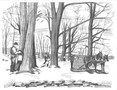 New England Snow Scene Drawing - Old Fashioned Maple Syruping by Richard Wambach