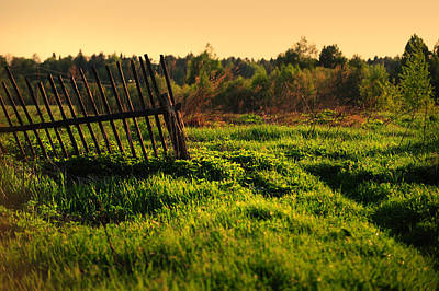 Photograph - Old Fence At The Field by Jenny Rainbow