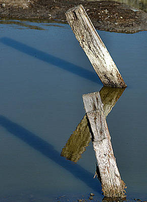 Photograph - Old Fence Posts by Bob Wall