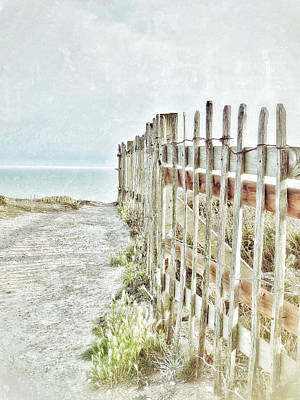Old Fence To The Sea  Art Print