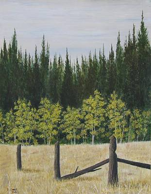 Painting - Old Fences by Dana Carroll
