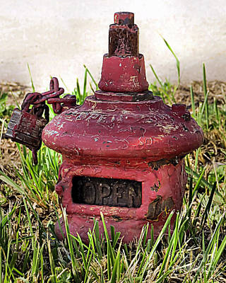 Photograph - Old Fire Hydrant by Janice Drew